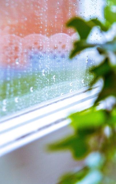Regnig dag i September (1 av 1)